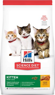 Hill's Science Diet Dry Kitten Food - Best Healthy Kitten Food
