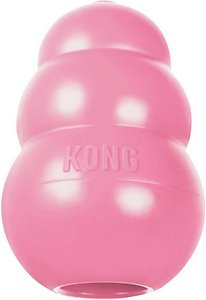 Kong Dog Toy for Dachshund