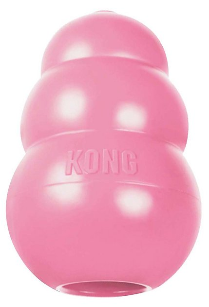 1. KONG Puppy Dog Toy