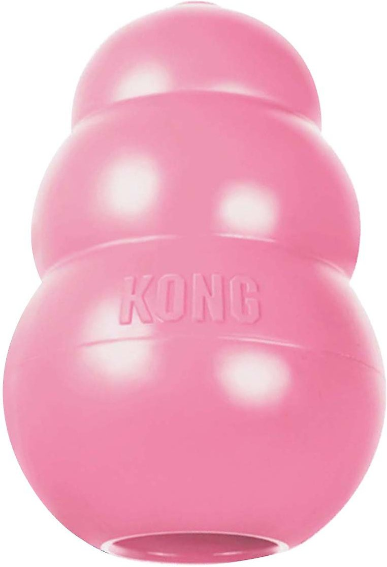 KONG Puppy Dog Toy, Color Varies, Large - Chewy.com