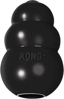 Rubber Kong Toy