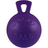 Jolly Pets Tug-n-Toss Dog Toy, Purple, 4.5-in
