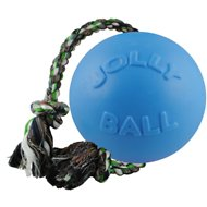 Jolly Pets Romp-n-Roll Dog Toy, Blueberry, 8-in