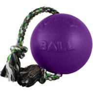 Jolly Pets Romp-n-Roll Dog Toy, Purple, 6-in