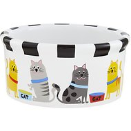 Signature Housewares Whiskers Cat Bowl, Small