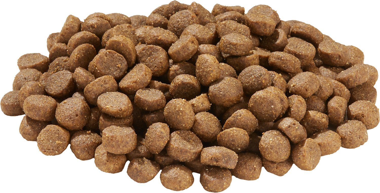 Precise Dry Dog Food Reviews