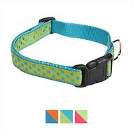 East Side Collection Polka Dot Dog Collar, Parrot Green, Small