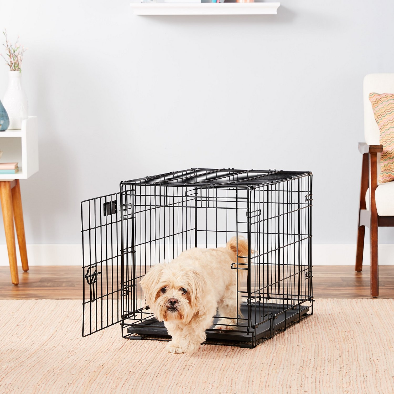 24″ Single Door Folding Metal Dog iCrate by Midwest