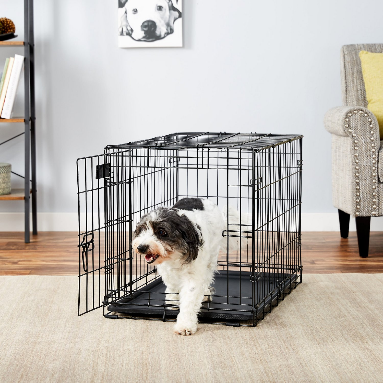 30″ Single Door Folding Metal Dog iCrate by Midwest