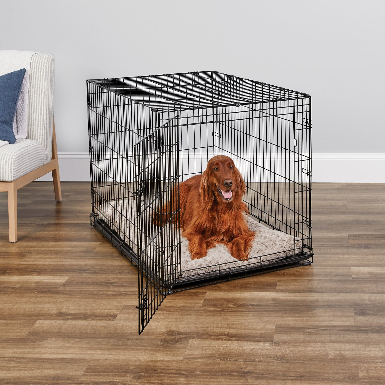 Midwest Icrate Single Door Fold Carry Dog Crate 42 In Chewy