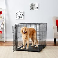 MidWest iCrate Single Door Fold & Carry Dog Crate, 42-in