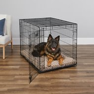 MidWest iCrate Single Door Fold & Carry Dog Crate, 48-in