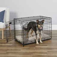 MidWest iCrate Double Door Fold & Carry Dog Crate, 36-in
