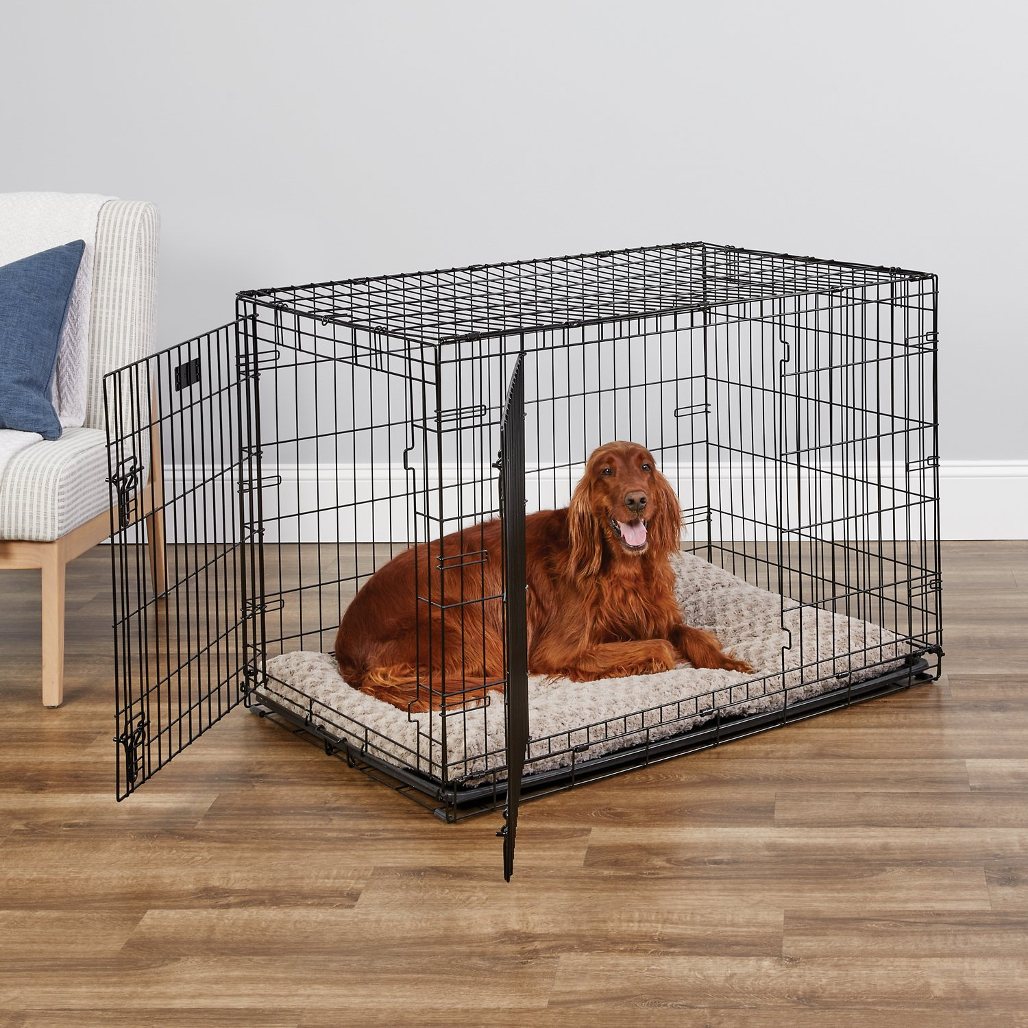 MidWest iCrate Double Door Fold & Carry Dog Crate, 42-in - Chewy.com