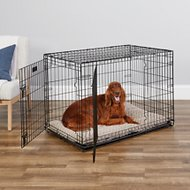 MidWest iCrate Double Door Fold & Carry Dog Crate, 42-in