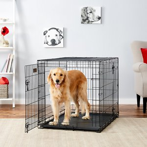 MidWest iCrate Fold & Carry Double Door Collapsible Wire Dog Crate, 42 inch