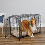MidWest iCrate Double Door Fold & Carry Dog Crate, 48-in