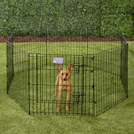 MidWest Exercise Pen with Step-Thru Door, Black E-Coat, 24-in
