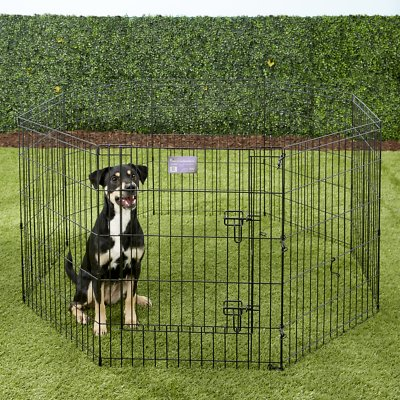 MidWest Wire Dog Exercise Pen with Step-Thru Door, Black E-Coat