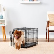 MidWest LifeStages Single Door Dog Crate, 22-in