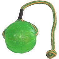 Starmark Swing 'n Fling Chew Ball Dog Toy