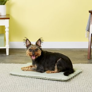 K&H Pet Products Cool Bed III Dog Pad