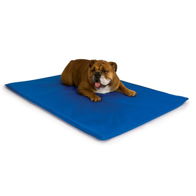 K H Pet Products Cool Dog Bed Blue Small