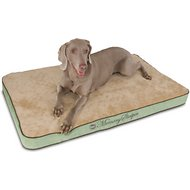 K&H Pet Products Memory Sleeper Dog Bed, Sage, Large
