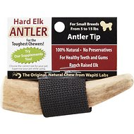 Wapiti Labs Elk Antler Tips Dog Chews, Antler Tip
