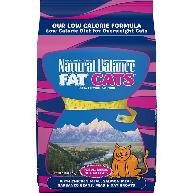 1. Natural Balance Dry Cat Food