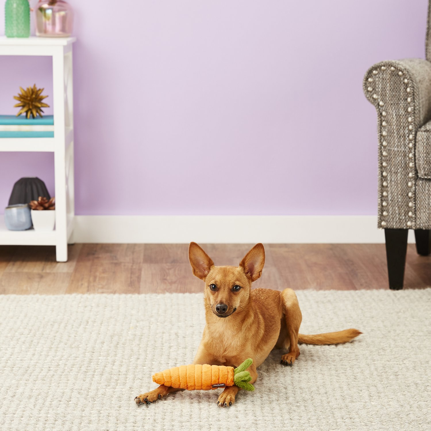 P L A Y Carrot Dog Toy