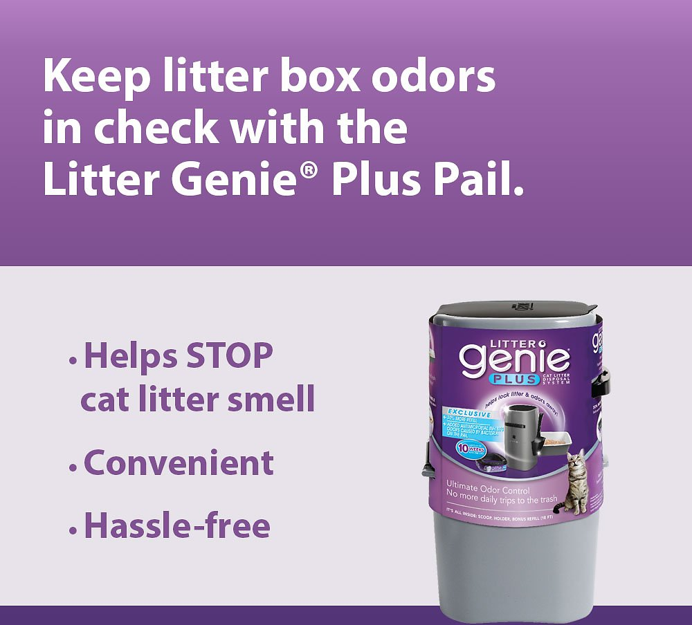 Litter Genie Plus Cat Litter Disposal System Silver Chewy Com