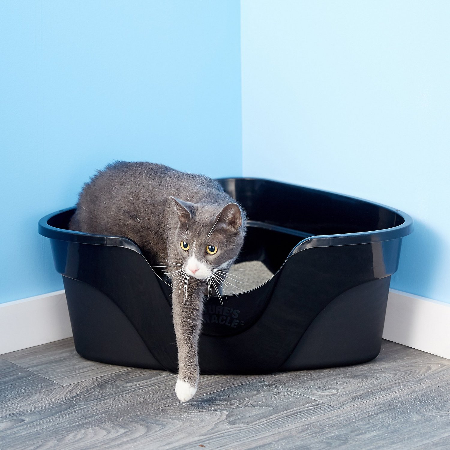 Nature S Miracle Just For Cats Advanced High Sided Corner Cat Litter Box Chewy Com