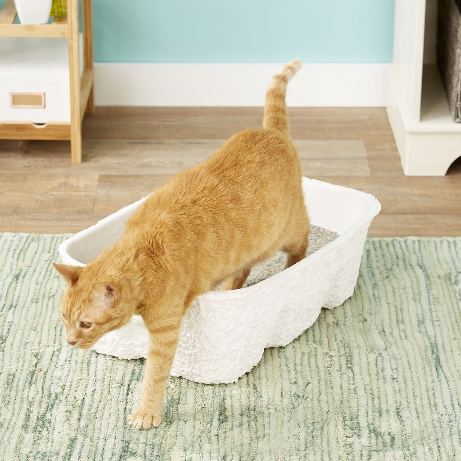 Nature's Miracle Disposable Cat Litter Box By Nature's Miracle