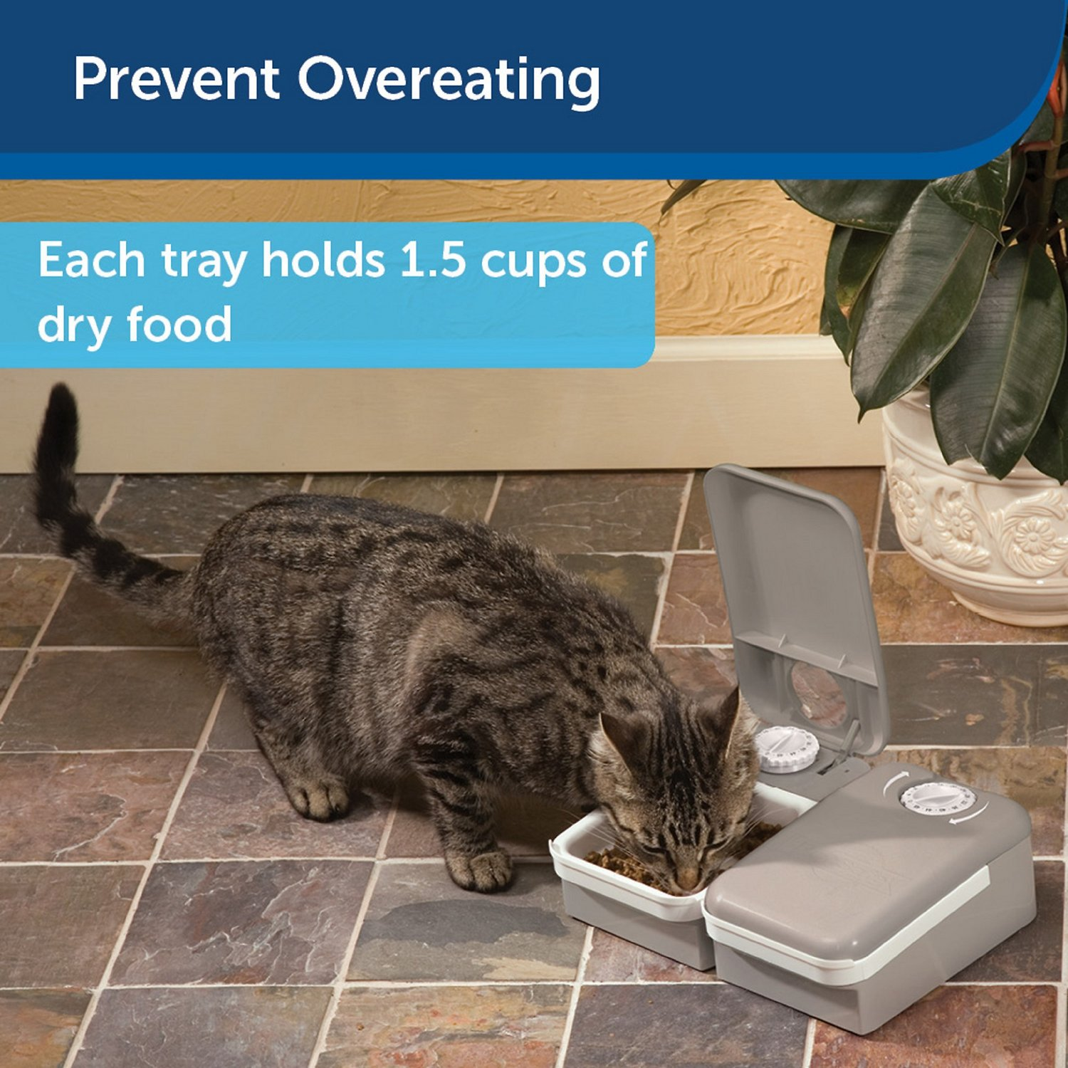 dispenser phone controlled by wifi food auto timer gempet programmable dp automatic cat perfect enabled petwant smart feeder dog capacity