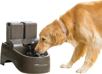 Drinkwell Outdoor Plastic Dog & Cat Fountain, 450-oz