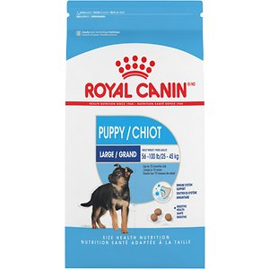Royal Canin Large Puppy Dry Dog Food, 6-lb bag; Large dogs are treasured for their incredible working abilities and have proven to be wonderful herding, tracking, rescue, guard and assistance dogs. These powerful and devoted dogs can often suffer from digestive sensitivities, joint pain and even cardiac issues. Royal Canin Maxi addresses the needs of the large dog throughout its lifetime - from the large dog's longer growth period, to nutrients to help limit inflammation of the joints and highly digestible proteins to ease digestion.