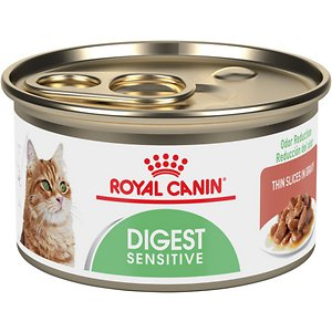 5 Best Cat Foods For Sensitive Stomachs 2019 [Stop Vomiting]