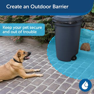 PetSafe Pawz Away Outdoor Pet Barrier - Chewy.com