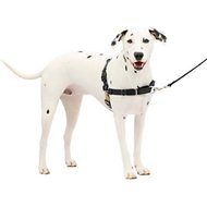 PetSafe Easy Walk Dog Harness, Black/Silver, Medium/Large