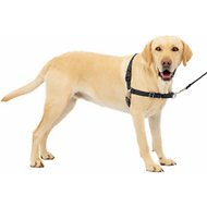 PetSafe Easy Walk Dog Harness, Black/Silver, Large