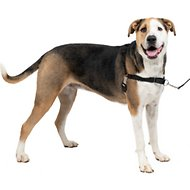 PetSafe Easy Walk Dog Harness, Black/Silver, X-Large