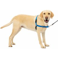 PetSafe Easy Walk Dog Harness, Royal Blue/Navy, Large