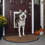 PetSafe Extreme Weather Pet Door, Large