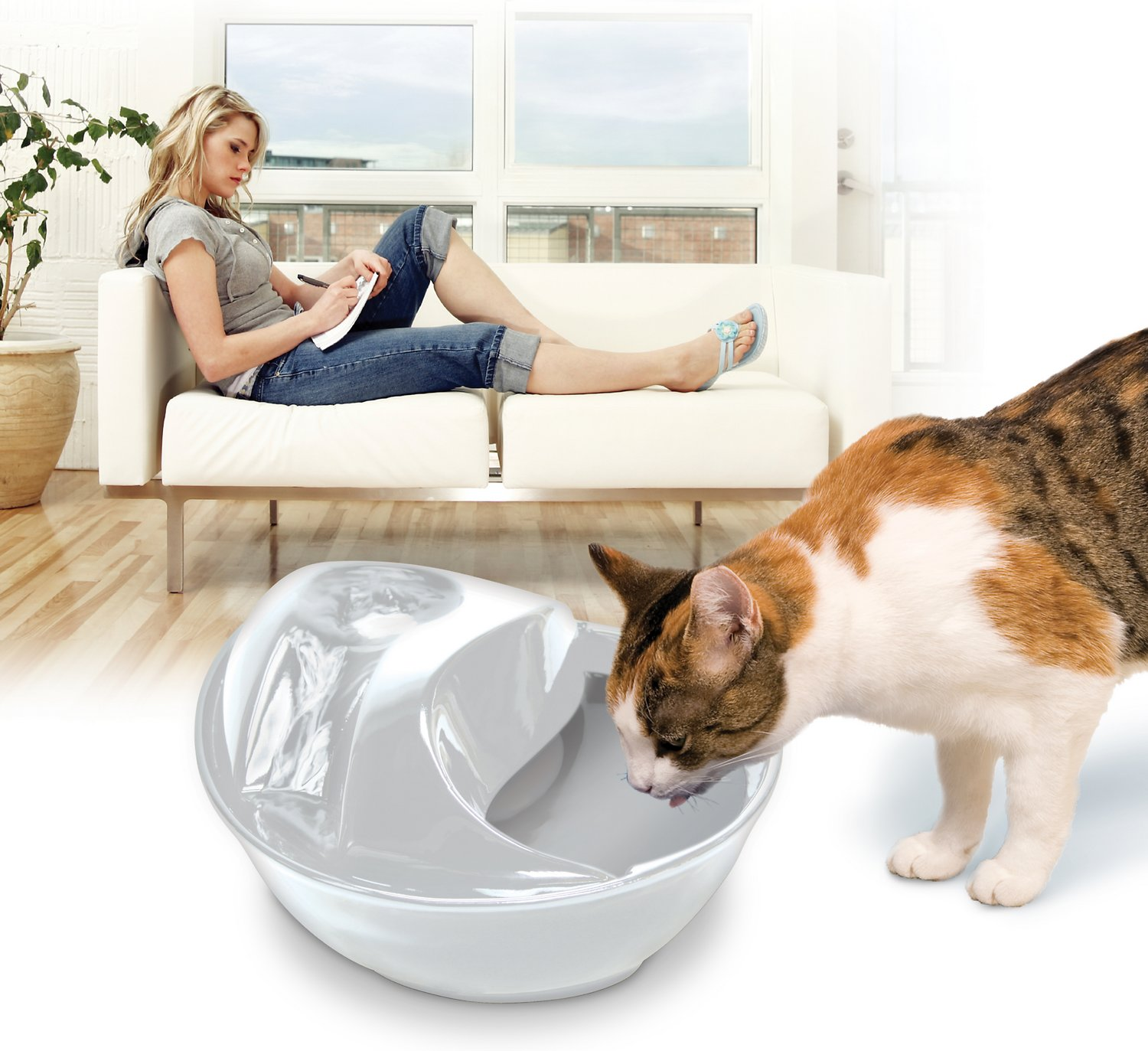 Pioneer Pet Raindrop Ceramic Drinking Fountain White Chewycom