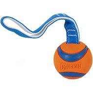 Chuckit! Ultra Tug Ball Dog Toy, Large