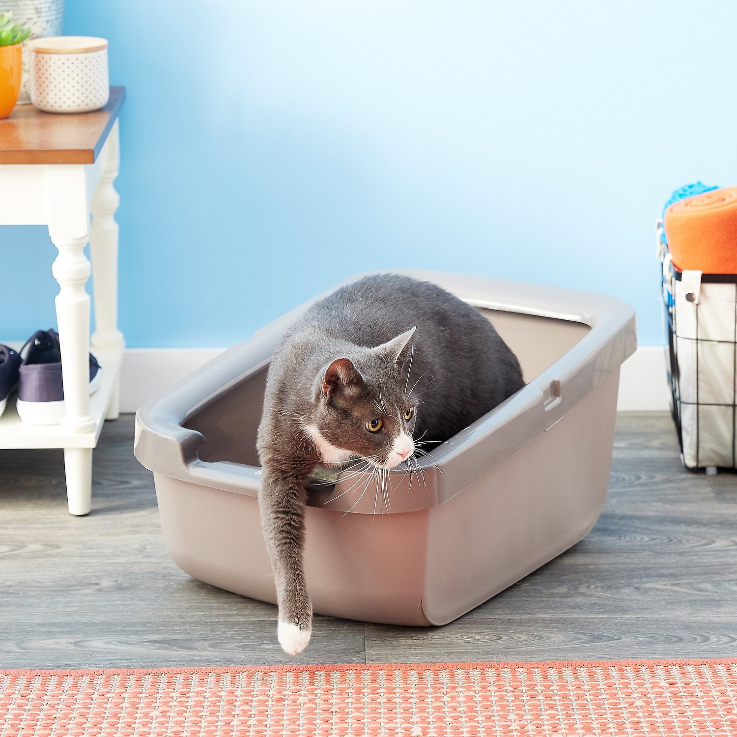 cat litter u0026 accessories litter boxes roll over image to zoom in