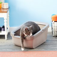 Catit Cat Pan with Rim, Gray