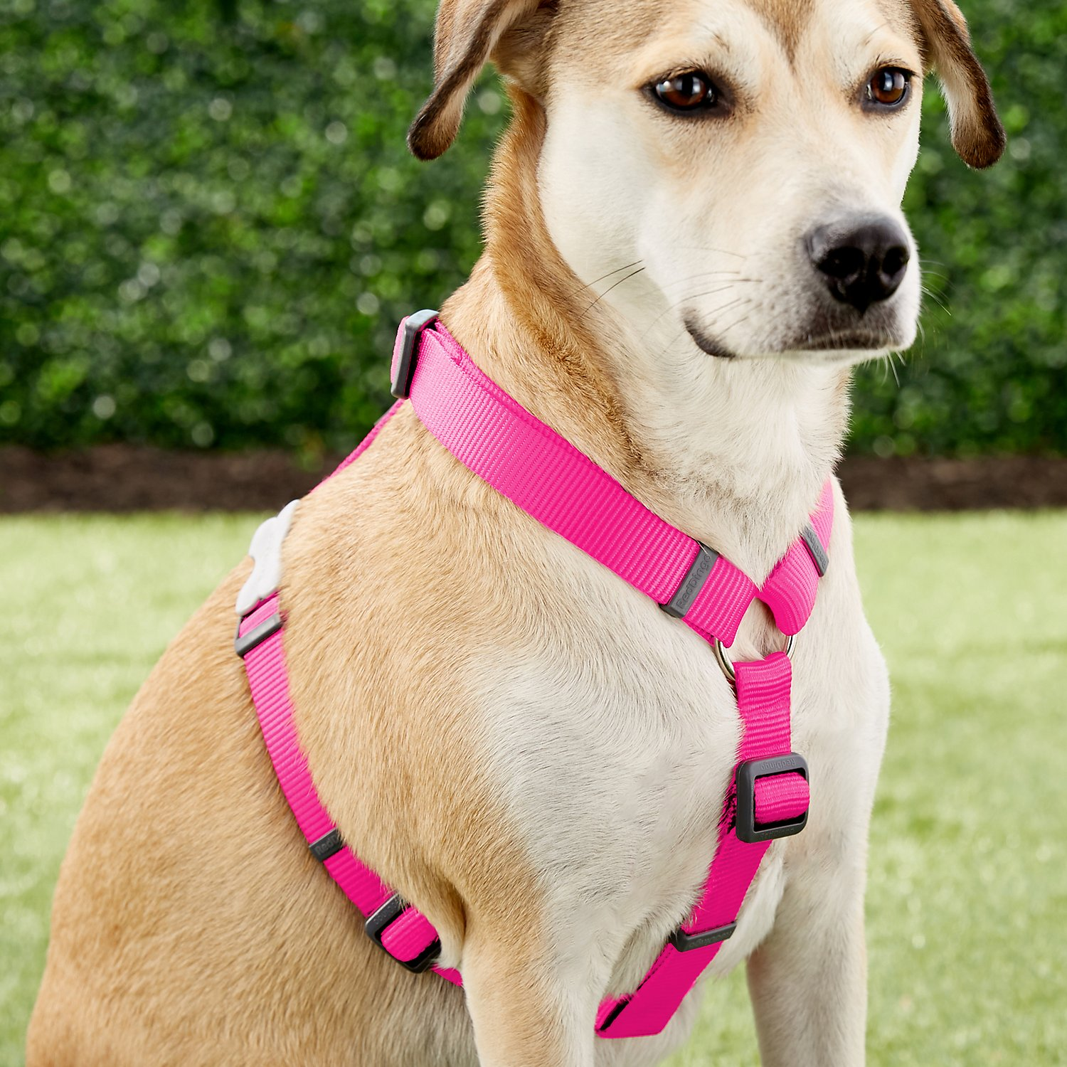 red dingo classic dog harness hot pink large. Black Bedroom Furniture Sets. Home Design Ideas