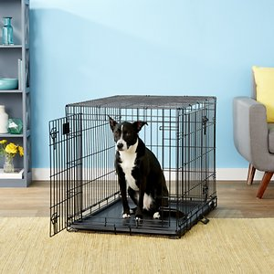 MidWest LifeStages Double Door Collapsible Wire Dog Crate, 36 inch